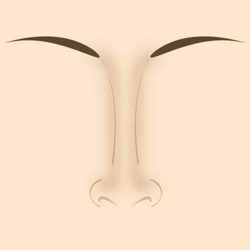 3 способа коррекции носа с помощью макияжа
